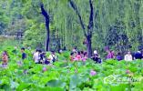 """玩水、避暑、文化游 锡城暑期游将迎""""迟来的高峰"""""""