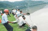 以补代罚 嵊州非法捕捞者在剡溪放流160万余尾鱼苗