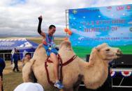 蒙古马拉松冠军奖品竟是骆驼
