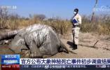 非洲博茨瓦纳数百头大象神秘死亡,官方公布初步调查结果