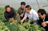 【乡村振兴】 如东激活农民能动性 打造乡村振兴生力军