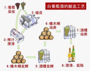 白葡萄酒酿制