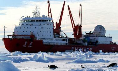 Penguins seen near China's research icebreaker Xuelong in Antarctica