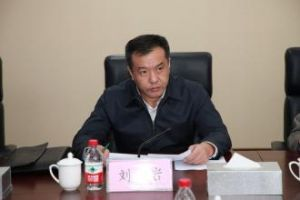 刘岩 大连市副市长