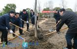 绿化美好家园 建设美丽江苏