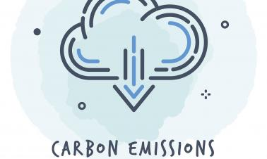 Chinese and Dutch researchers develop catalyst for capturing carbon dioxide