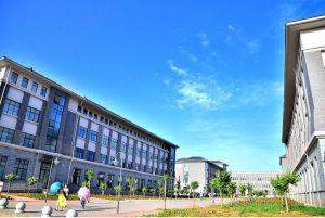 教育科学学院