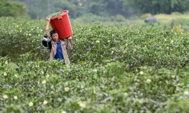 China releases guideline on overcoming difficulties in fight against poverty