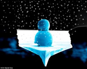 世界上最小的雪人