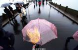 """杭州周末有望见阳光 淘宝""""内裤""""搜索量增长近8倍"""