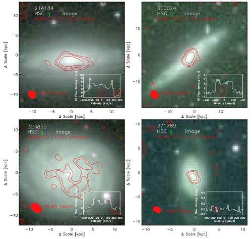 FAST观测的四个星系的假彩色光学图像。中国科学院国家天文台供图