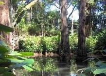 迪居甲国家公园