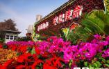 济南市园林和林业绿化局统筹布置花卉景观庆祝建党100周年