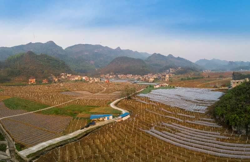 贵州永睦村:打造生态农旅一体观光园,巩固脱贫成果