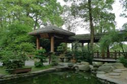 荆州盆景园
