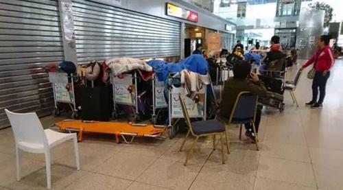 俄航班大面积延误 360名中国旅客被迫滞留比利时