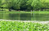 今日谷雨丨初夏将至 遇见最美暮春色