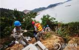洞头区供电公司对全域配电网改造升级 致力提升海岛生态之美