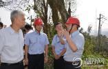 浙江省能源局局长蔡刚一行深入洞头调研台风受损情况及电网建设工作