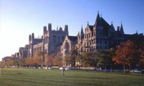 观察  美国顶尖大学教育最重视的是什么教育?