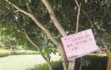 @宁波市民 很多喷洒过农药 路边的观赏性野果请别摘